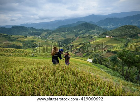 Tribal costume in rice fields for terraced on mountain