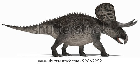 Triceratops walking - stock photo