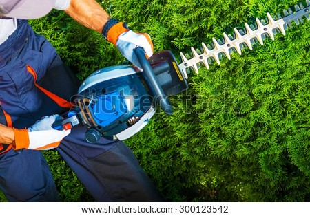 Trimming Time. Gardener with His Gasoline Hedge Trimmer in Action.  - stock photo