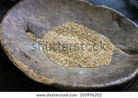 Triticum spelta - Spelt, in old wooden bowl - stock photo