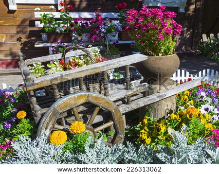 Trolley with beautiful flowers in the garden - stock photo