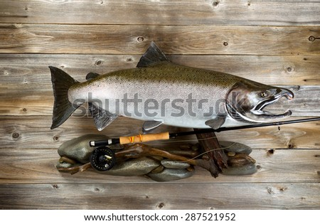 Trophy pacific salmon and fly fishing equipment on rustic wood.  - stock photo