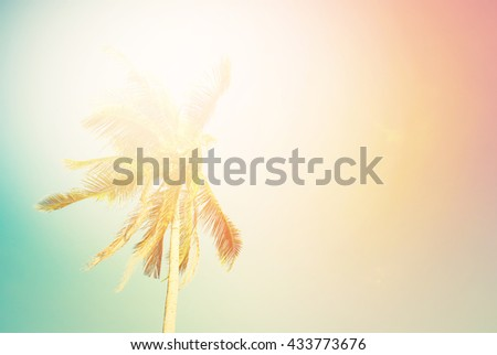 Tropical Background Palm Tree Sun Light Holiday Travel Design Toned Pastel Effect - stock photo