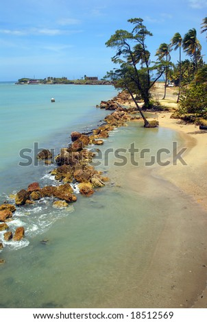 Tropical beach and blue ocean in Puerto Rico Vertical - stock photo