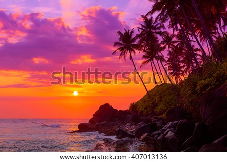 Tropical beach at sunset with palm trees shiny waves splashes