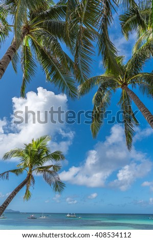 Tropical beach background from Boracay island with coconut palms tree leafs, blue sky and turquoise sea water, Travel Vacation - stock photo