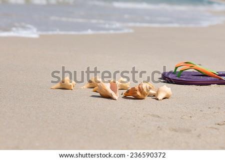 Tropical beach getaway  - stock photo