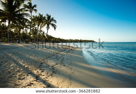 Tropical beach in a sunny day - stock photo