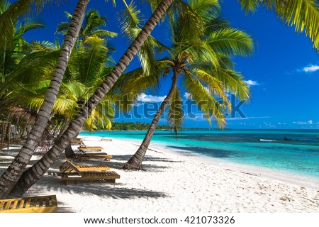 Tropical beach in caribbean sea, Saona island, Dominican Republic. - stock photo