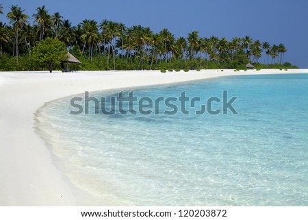 tropical beach in the Maldives - stock photo