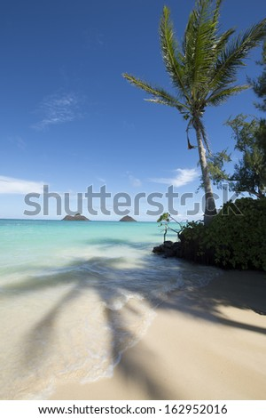 Tropical beach - Lanikai, Oahu, Hawaii -13 - stock photo