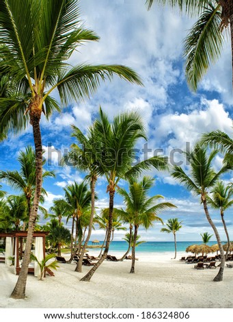 Tropical beach, ocean and sky. beautiful beach and tropical sea. Dominican Republic, Seychelles, Caribbean, Bahamas. Relaxing on remote Paradise beach.