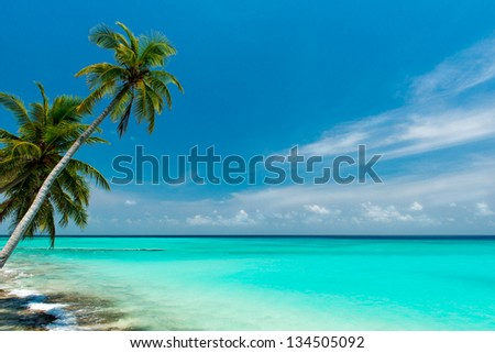 tropical beach on the maldives - stock photo