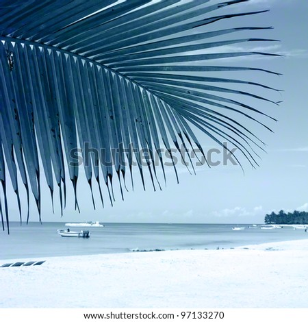 Tropical beach. One-color background image for the photo album, photo book. - stock photo