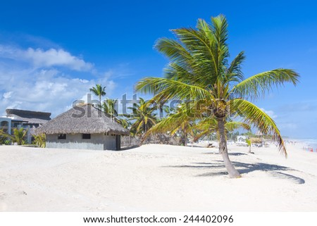 Tropical beach, Punta Cana, Dominican Republic