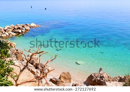 tropical beach - saturated colors - stock photo
