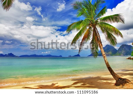 tropical beach scenery