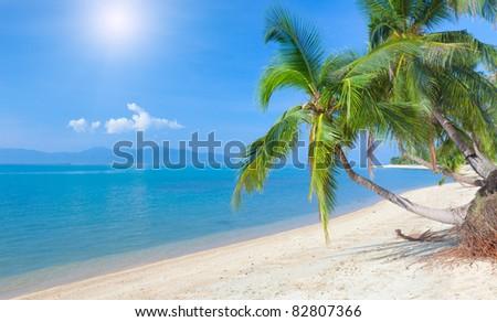 tropical beach with coconut palm. Maeman beach, koh Samui, Thailand - stock photo