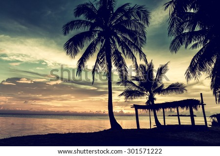 Tropical beach with coconut palm, vintage color - stock photo