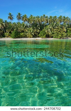 Tropical beach with lush vegetation and clear water, viewed from the sea, Caribbean - stock photo
