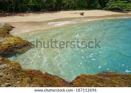 Tropical beach with natural pool in the Caribbean sea, playa Chiquita, Puerto Viejo de Talamanca, Costa Rica, - stock photo