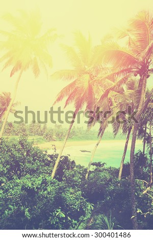 Tropical beach with palm on exotic island - stock photo