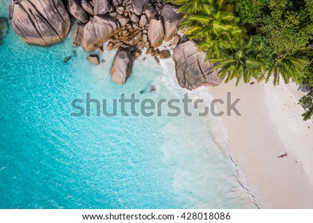 Tropical beach with sea and palm taken from drone. Beach drone photo. Beach and sea photo. Beach and palms. White sand beach. Romantic beach aerial shot.  - stock photo