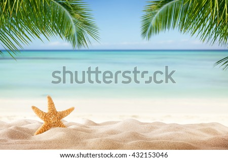 Tropical beach with sea-star in sand, copyspace for text. Concept of summer relaxation - stock photo