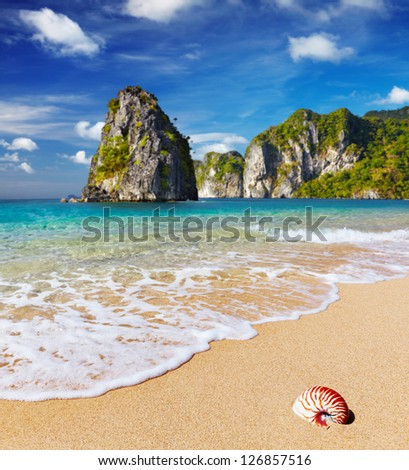 Tropical beach with turquoise see and blue sky - stock photo