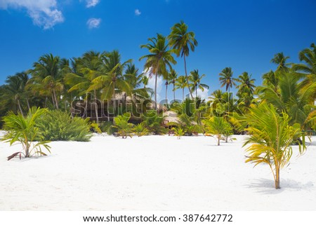 Tropical beach with white sand and palm trees in Saona Island, Dominican Republic