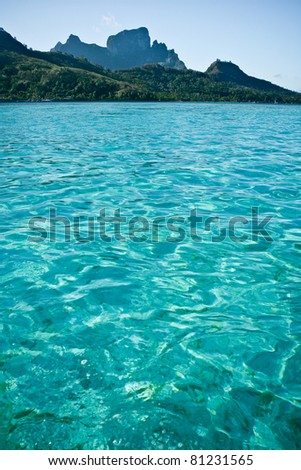 Tropical blue ocean waters