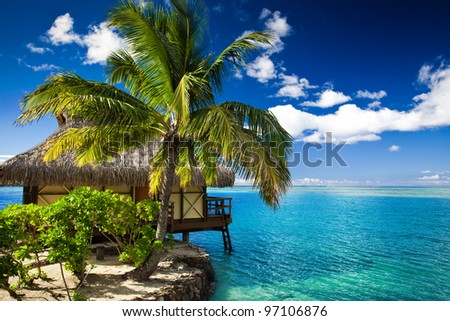 Tropical bungalow and palm tree next to amazing blue lagoon - stock photo