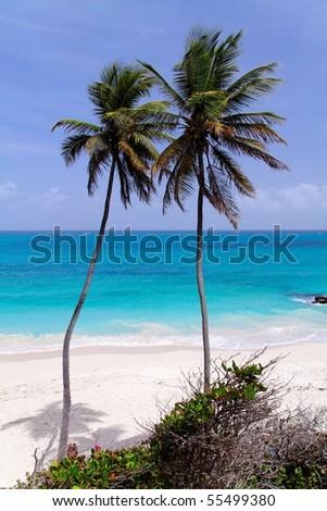 Tropical caribbean beach / Bottom Bay / Barbados - stock photo