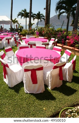tropical celebration preparation - stock photo