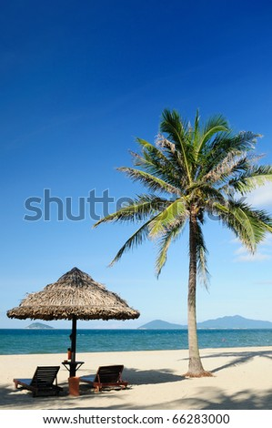 Tropical China beach with coconut palm near Hoi An, Vietnam - stock photo