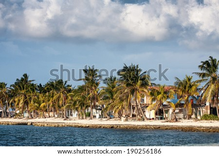 Tropical coast with houses and palms over the sea, Caribbean, Cuba - stock photo