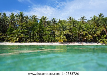 Tropical coast with sandy beach viewed from sea surface, Caribbean,Bocas del Toro, Panama, Central America - stock photo