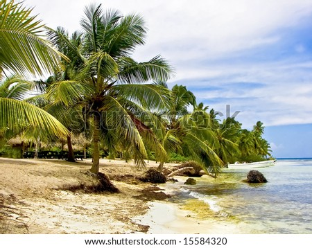 Tropical cove shoreline surrounded with palm trees. - stock photo