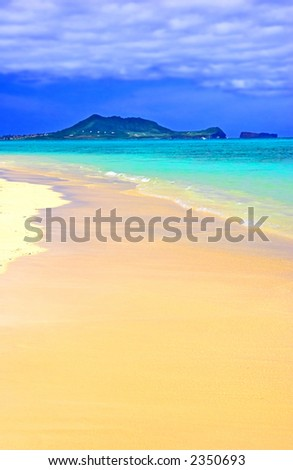 Tropical dreams - stock photo