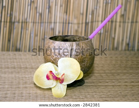 Tropical Drink - stock photo