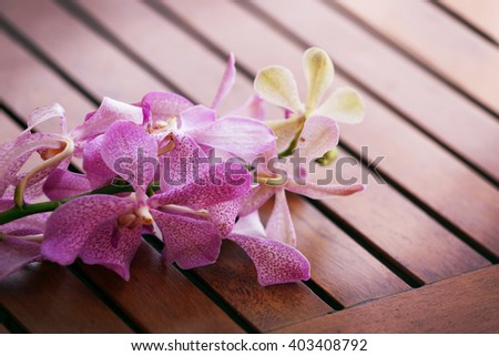 Tropical flower on wooden surface. - stock photo