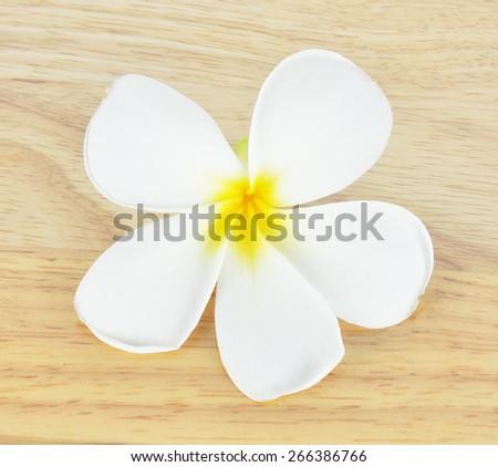 Tropical flowers frangipani on wood. - stock photo