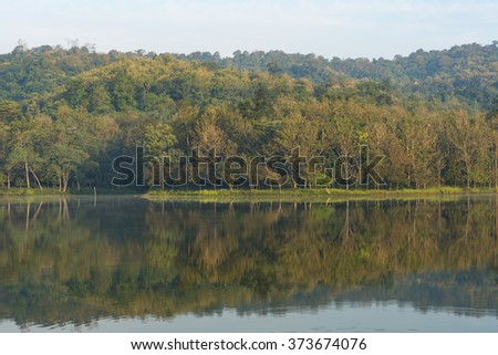 tropical forest water lake - stock photo