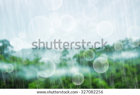 Tropical forest with raining before sunset. - stock photo