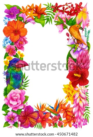Tropical Frame, Certificate or Diploma of completion (design template, flower background) with birds, floral pattern, border. Greeting card, Cover, School awards, children (kids) winner certificate - stock photo
