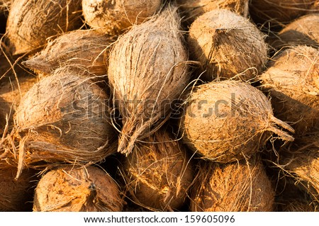 Tropical fruits natural background. Fresh coconuts at market place - stock photo