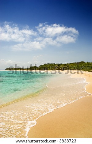 Tropical golden sand beach with turquoise waters