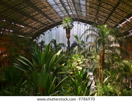 Tropical green house, location in Atocha train station, Madrid, Spain.