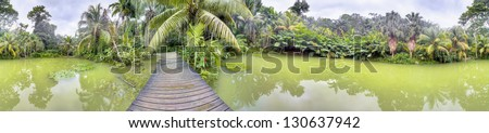 Tropical green lake in the Cranbrook Forest, Jamaica - stock photo