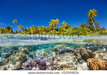 Tropical island above and bellow water - stock photo